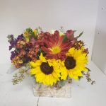 Sunflowers and Waxflower